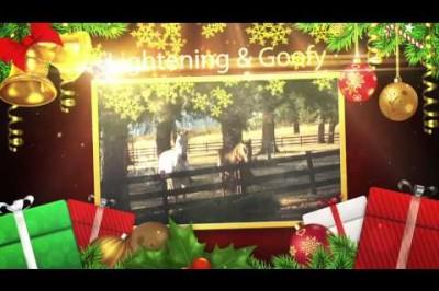 2013 Mangold Holiday Video