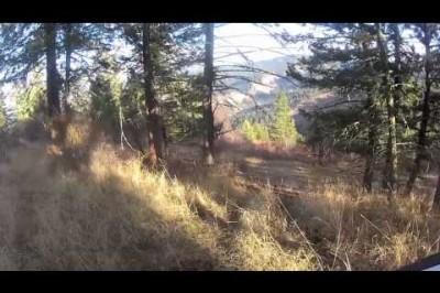 Idaho RZR Adventures