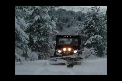2009 Mangold Holiday Video